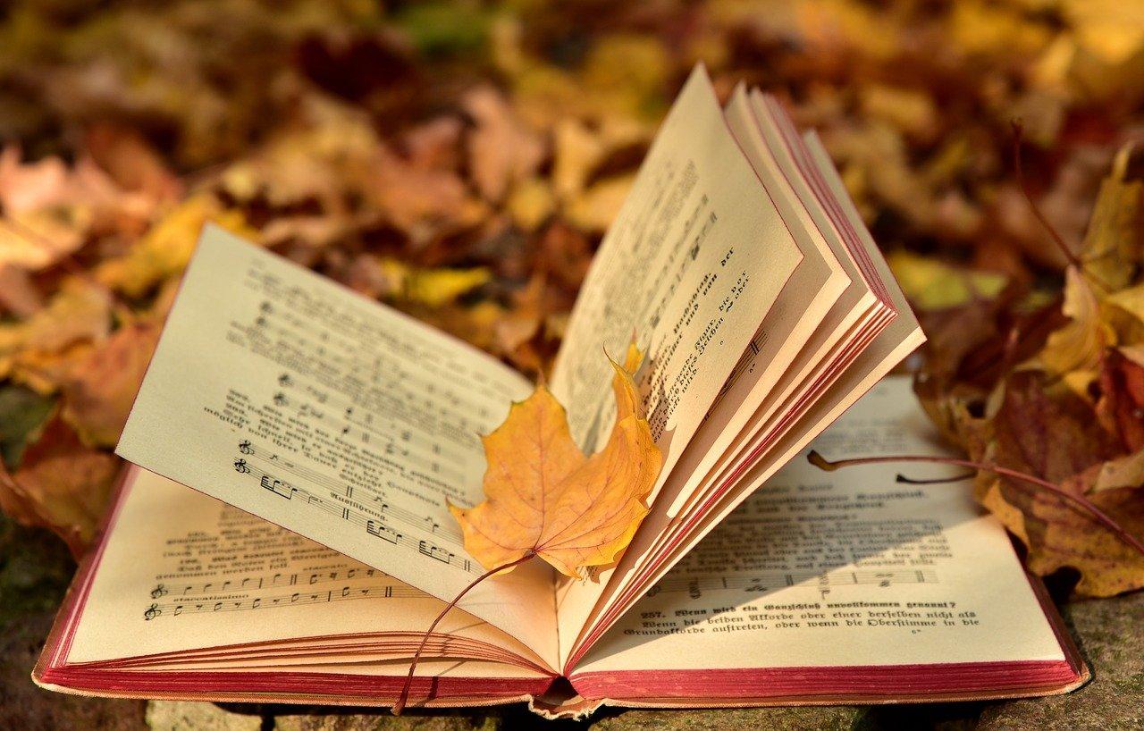 book, autumn, leaf